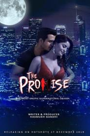 The Promise Hindi WEB-DL – 720P – 150MB – Download
