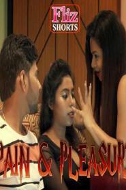 Pain And Pleasure 2020 Fliz Hindi Short Film