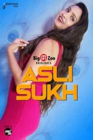 Asli Sukh (2020) BigMovieZoo Hindi Web Series Season 01