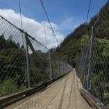 Swingbridge - Karangahake