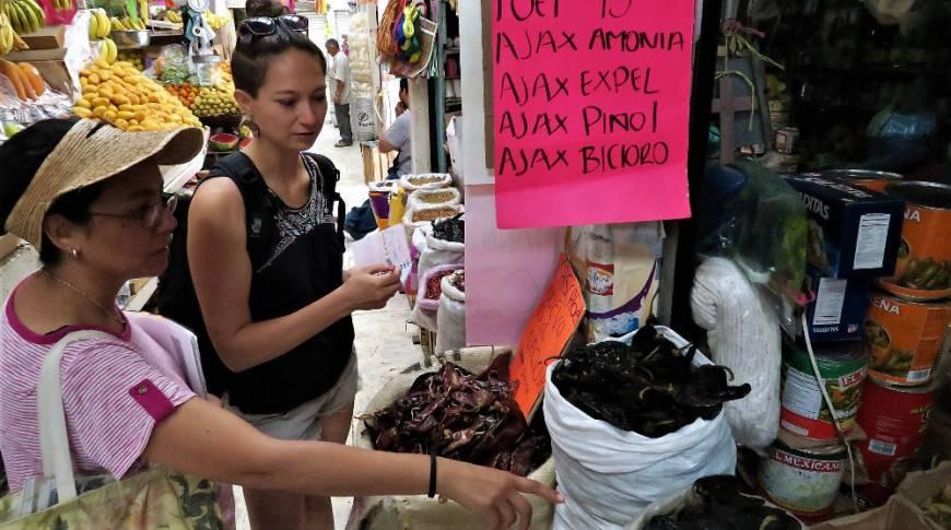 Ckaudia und ich beim Spanischlernen auf den Märkten Mexikos