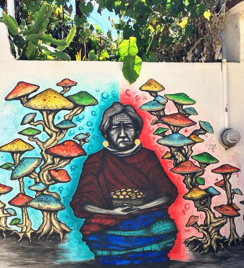 Graffiti einer alten Frau mit halluzinogenen Pilzen im Alebrijes Dorf Arrazola in Oaxaca