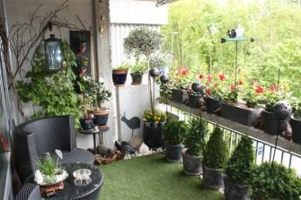 Des tas d'idées pour avoir un balcon verdoyant !