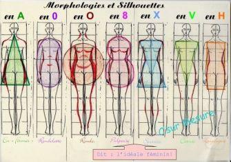 Quelle est votre morphologie ?