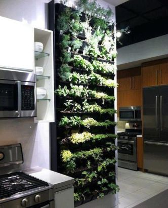 Cultiver des herbes aromatiques chez soi 02