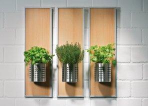 Cultiver des herbes aromatiques chez soi 05