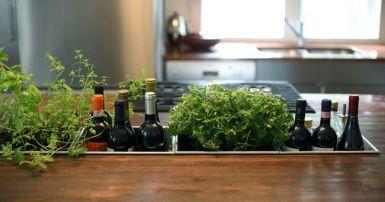 Cultiver des herbes aromatiques chez soi 10