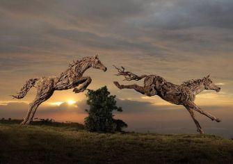 Les sculptures en bois flotté de l'artiste James Doran-Webb