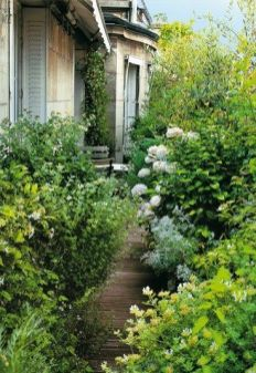 Jardin sur balcon 04