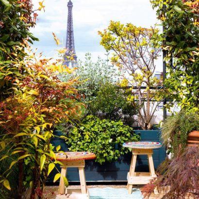 Jardin sur balcon 11