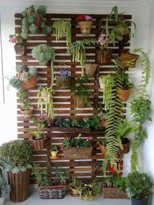 Nouvelle tendance, le jardin vertical 01
