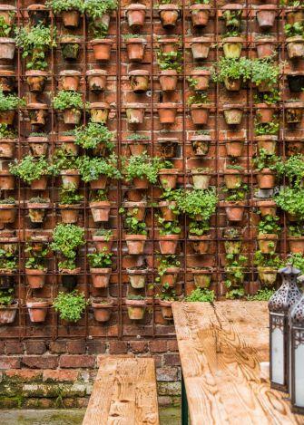 Le jardin vertical, une alternative au manque d'espace