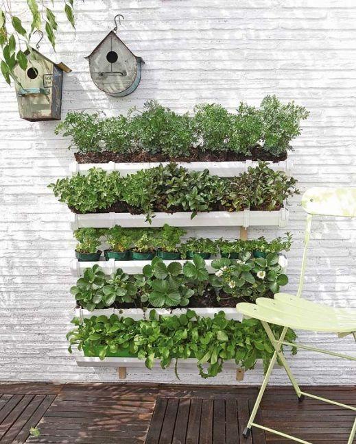 Nouvelle tendance, le jardin vertical 12