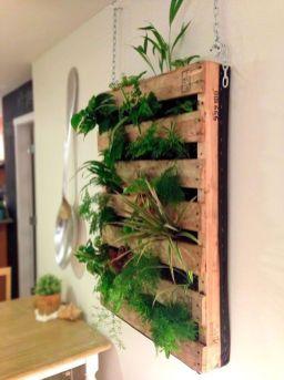 Nouvelle tendance, le jardin vertical 19