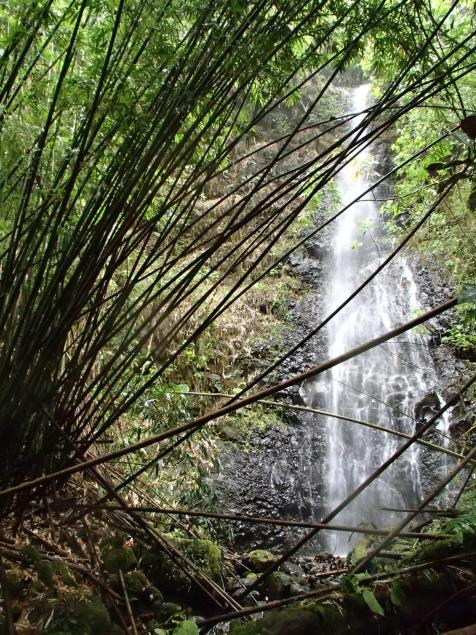 Une cascade traversant une forêt de bambous (juste avant le 4e gué)
