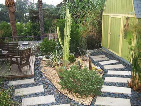 Rocaille Jardin Plantes Exotiques Moving Tahiti