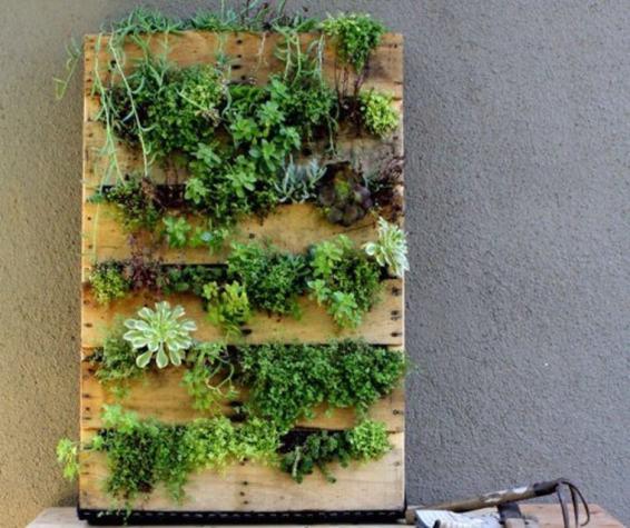 mur-vegetal-palette-bricolage