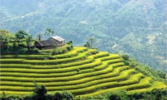 Le Vietnam, une destination à prévoir une fois dans sa vie