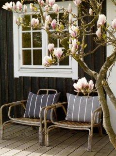 le-fauteuil-rotin-enfant-bien-amenager-le-salon-luxueux-chaise-en-rotin-veranda-avec-magnolia