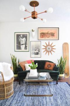 plantes-grasses-dintérieur-salle-de-séjour-tapis-gris-et-plantes-grasses