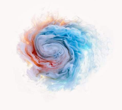 flowers-and-swirls-Mark-Mawson-15