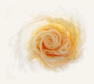 flowers-and-swirls-Mark-Mawson-18