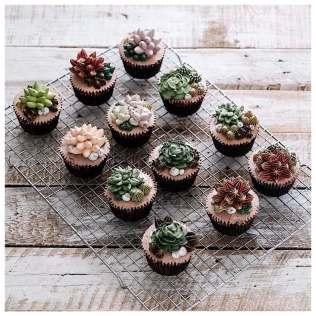 Iven-Kawi-terrarium-flower-cakes-8