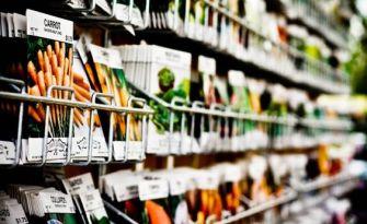 Jardinage : Comment choisir des graines de qualité ?