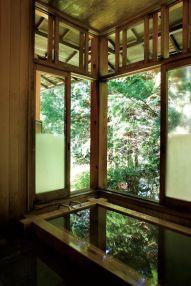 AMBIANCE JAPONNAISE - MOVING TAHITI (30)