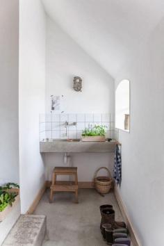 des-plantes-vertes-sur-le-lavabo