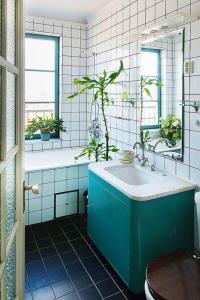 des-plantes-vertes-sur-le-sol-de-la-salle (1)