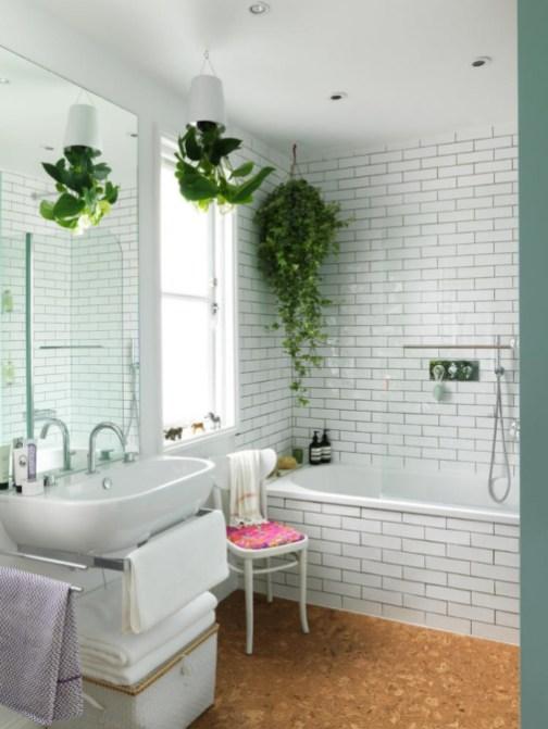 des-plantes-vertes-suspendues-au-plafond