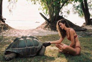 Seychelles73