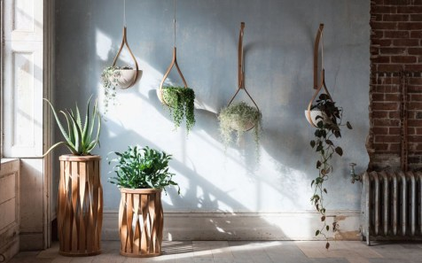 modern-wood-planters-280518-131-01
