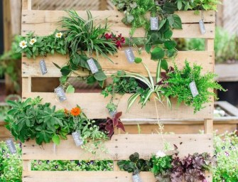Comment réaliser une jardinière verticale avec une palette ?