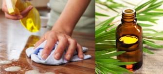 Comment réaliser un spray désinfectant aux huiles essentielles ?