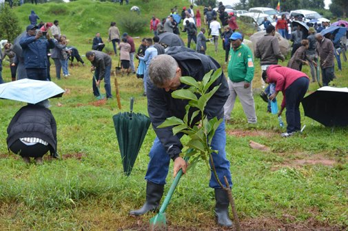 350-million-trees-planted-record-green-legacy-ethiopia-1-5d41517494324__700