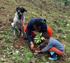 350-million-trees-planted-record-green-legacy-ethiopia-5d41575c5dc11__700