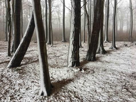 ©Christian Helwig, 'Snowshadow'