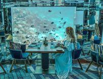 Un restaurant vous invite à dîner à côté d'une vie sous marine spectaculaire.