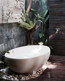 Des plantes dans votre salle de bain (4)