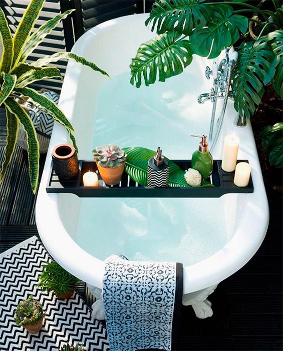 Des plantes dans votre salle de bain (9)