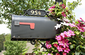 step by step guide to changing your address moving com