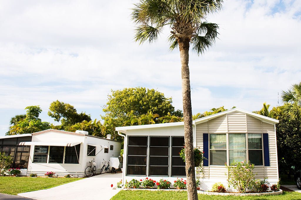 manufactured home and palm tree