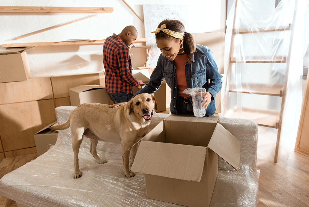 The Dos and Don'ts of Moving Animals