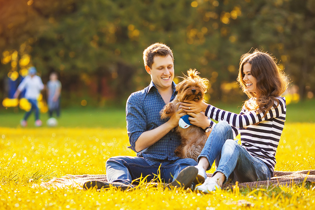 couple with dog in the park