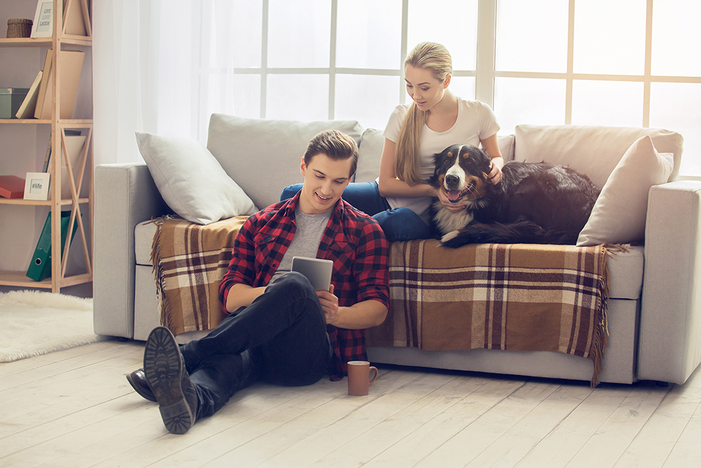 Pet Policies for a Rental: Here's What You Need To Know