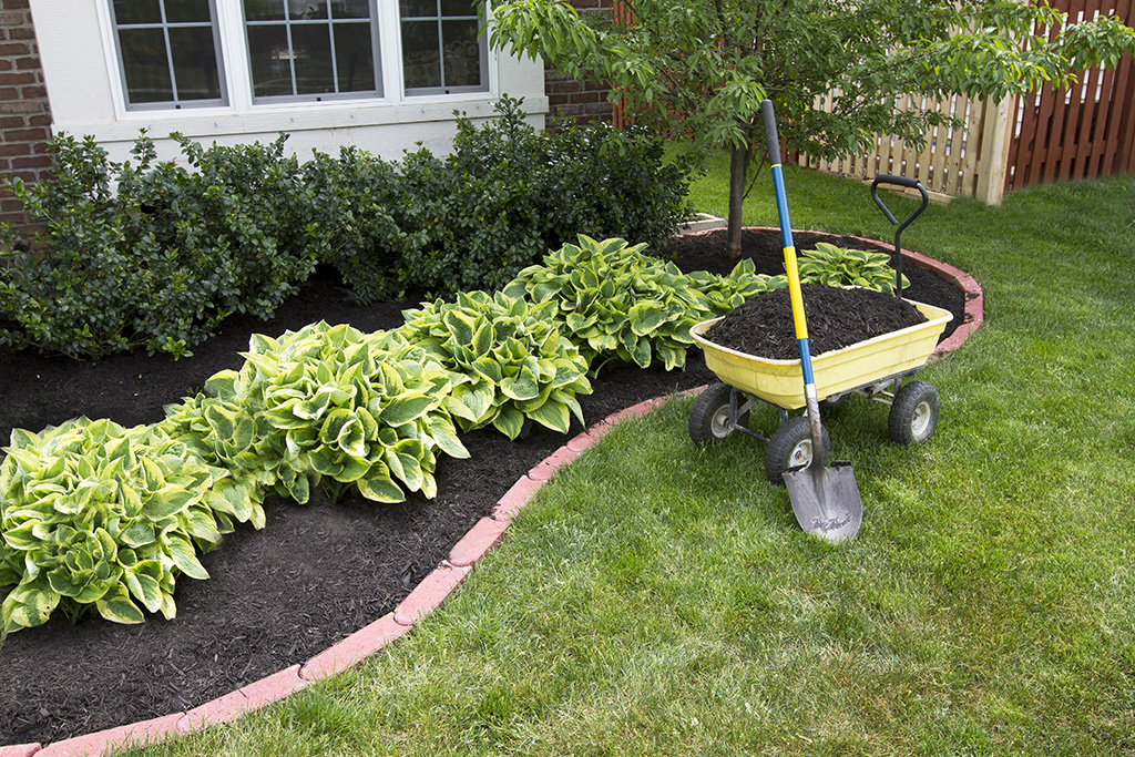 9 Simple DIY Ideas for Front of House Landscaping