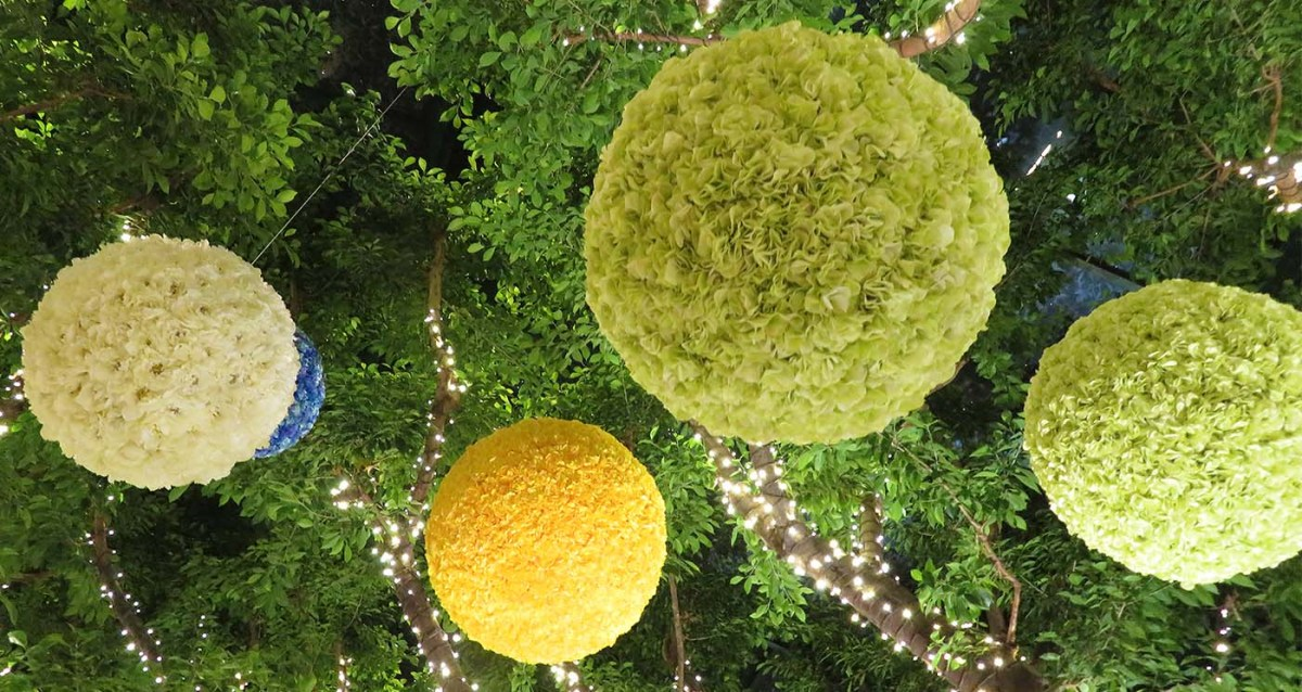 Flower Extravagance / Extravagancia de Flores
