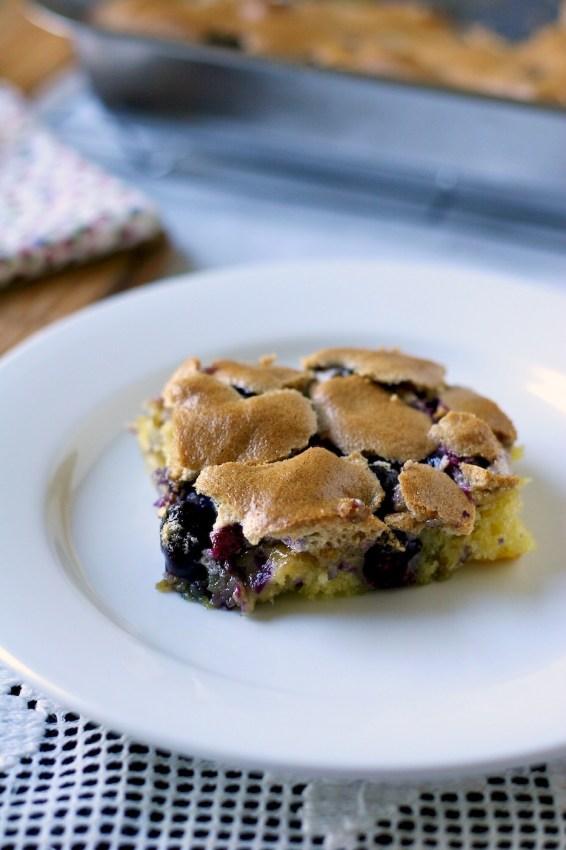 blueberry squares // movita beaucoup